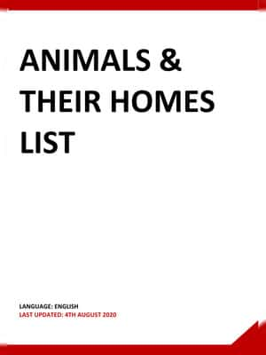 Animal and their Homes List